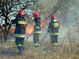 Apel Komendy Powiatowej PSP w Wadowicach o zaniechanie szkodliwego wypalania traw